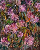 29 | Rhododendron IX