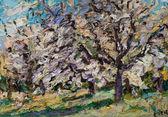 006 | Blühende Kirschbäume in Leitzkau II